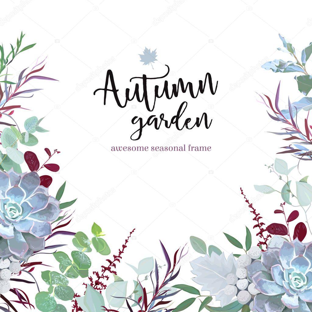 Autumn plants vector design frame arranged from eucalyptus, agon