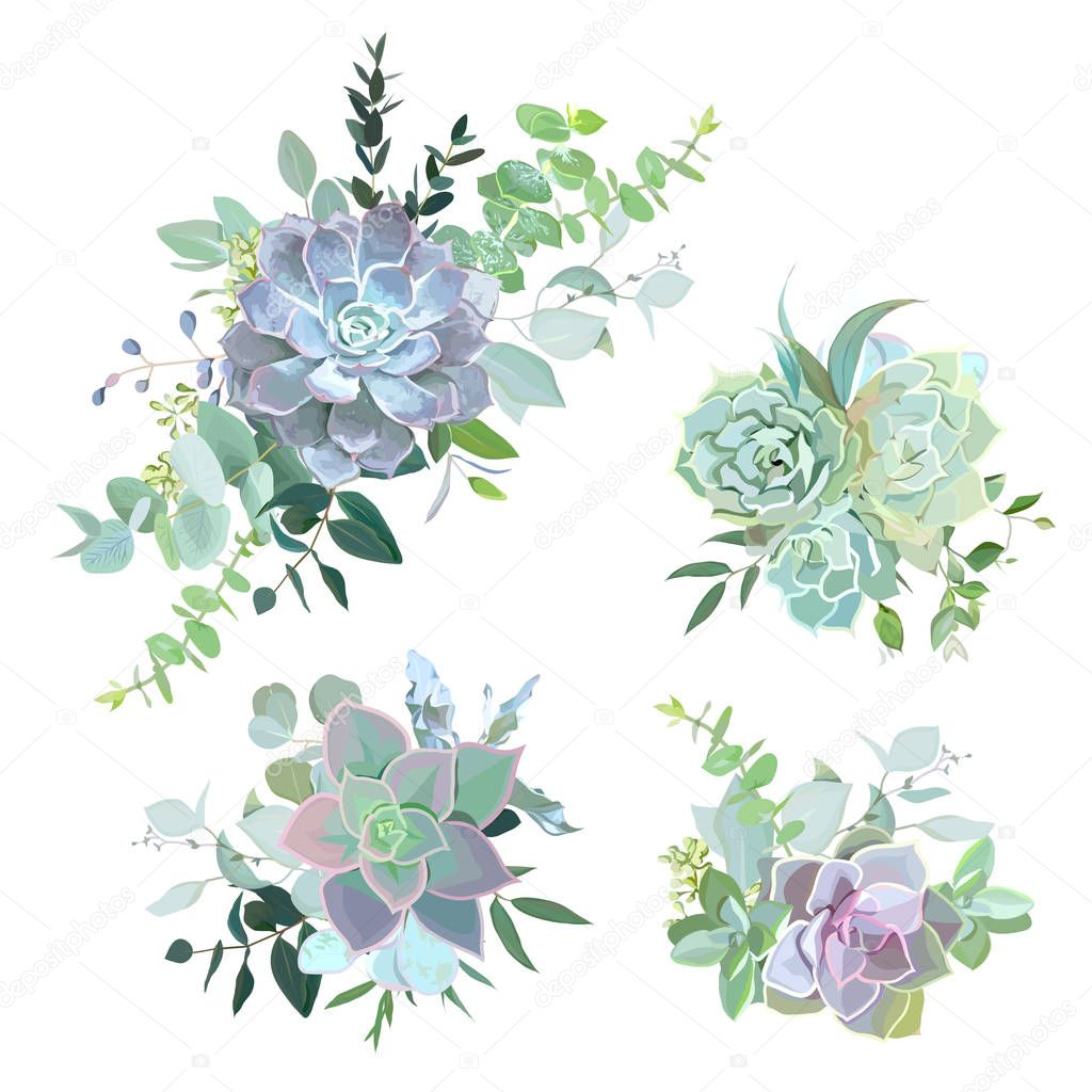 Green colorful succulent bouquets vector design objects