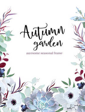Autumn plants vector design frame arranged from anemone, eucalyptus, agonis, echeveria succulent, silverberry, brunia and black berries, mixed herbs. Banner or border. All leaves are not cut. Editable stock vector