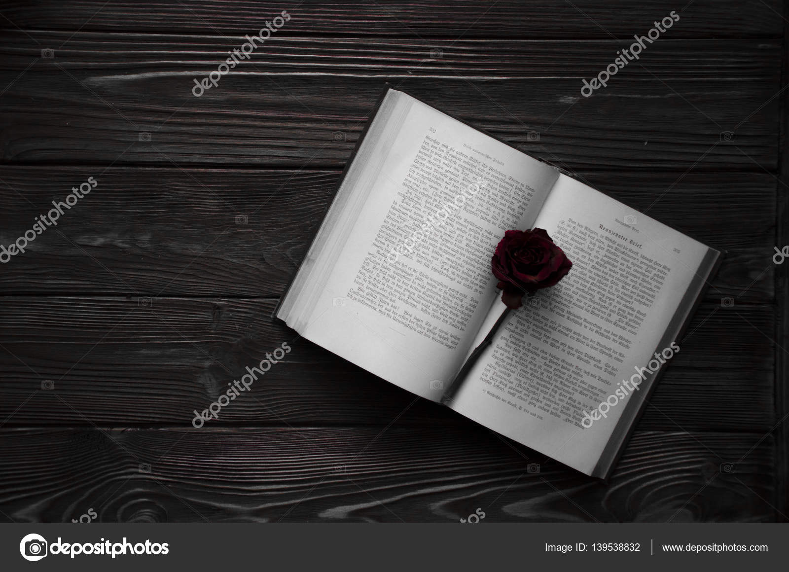 An open book with a red rose flower on it  Wooden background