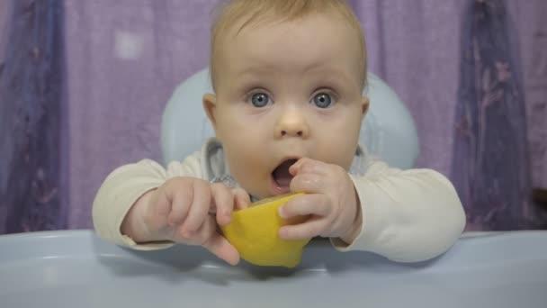 Malý chlapec ochutná citron.