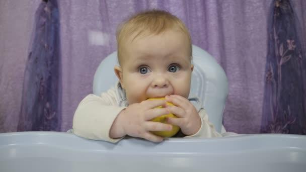 A small boy tastes the lemon.