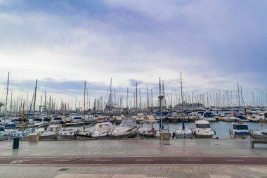 Palma de Mallorca, marina skyline with yachts. Spain