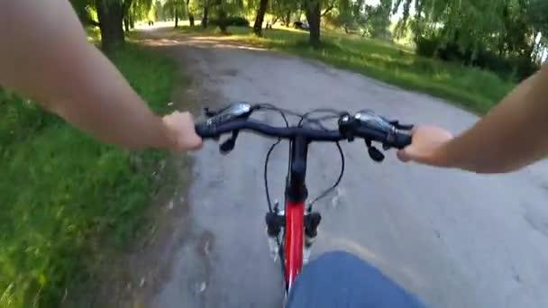 Na polní cestě na kole v lese