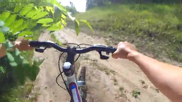 Muž na kole jezdí na polní cestě lesem