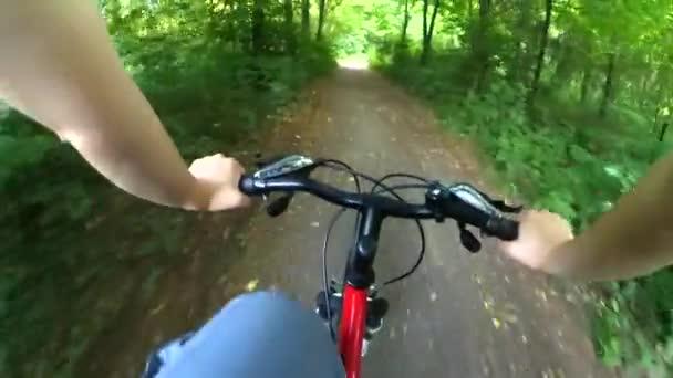 Člověk na kole na kole jezdit rychle listnatý les