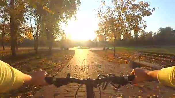 Cykloturistika na úzké stezce v lesní houštiny