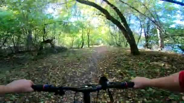 Muž na kole jezdí v lese na podzim za slunečného počasí.