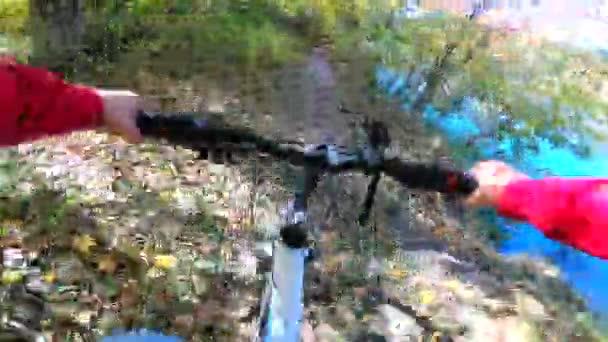 Video B322855122
