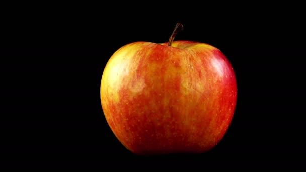 Jablko na černém pozadí.