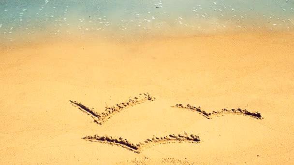 Sirályok rajzolása a homokra. Lövöldözés a parton.