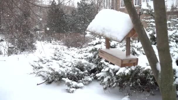 Krmítko na náměstí v pozadí padajícího sněhu. Zpomalený pohyb.