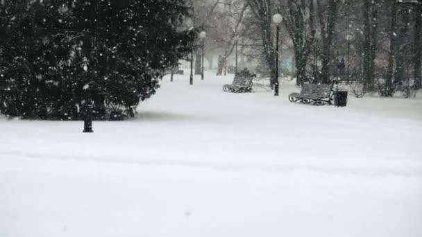 Padající sníh ve městě. Zpomalený pohyb.