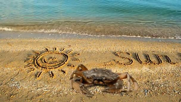 Krabben und eine Inschrift auf Sand, der Strand. Die Zeichnung der Sonne auf Sand.