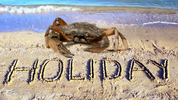 Krabben und eine Inschrift auf Sand, der Strand. Word ein Urlaub auf Sand.
