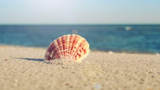 Náboje na pláži. Fotografování na pláži.