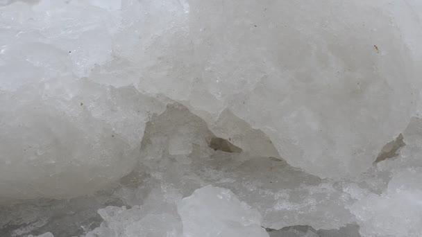 Zmrzlé moře. Led u moře.