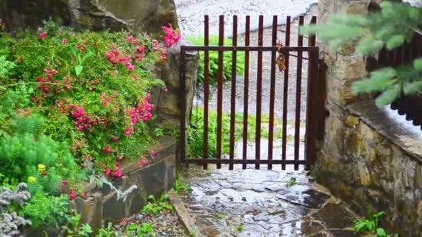Rain and house. Gate in the yard