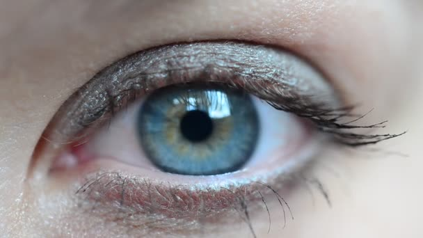 Female eye. Look and eye