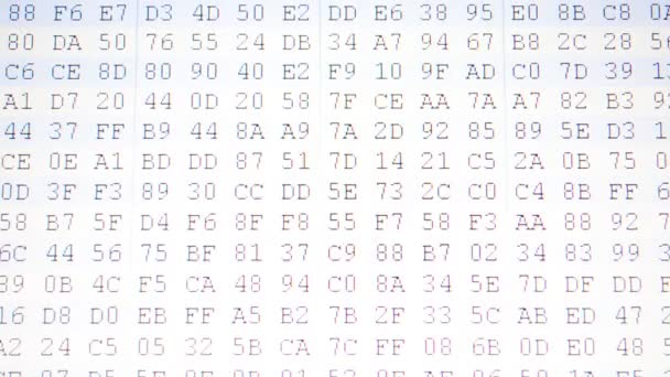Movement of a code binary. Hexadecimal program code on screen. Animated background of moving binary code numbers.