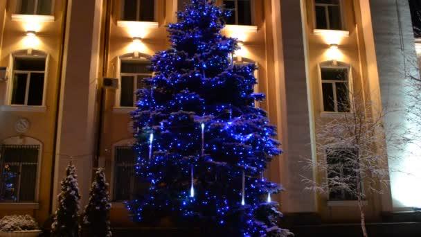 Vánoční strom v zimě v girlandech.