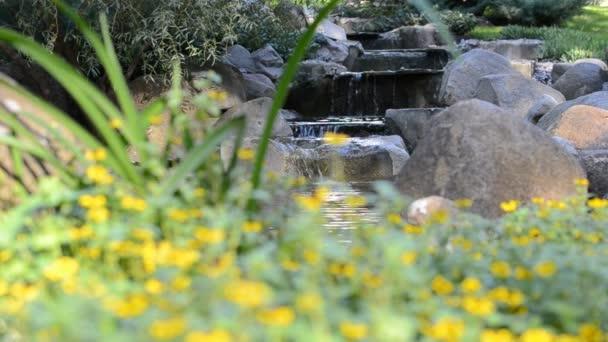 Natáčení krásné krajiny květin a potoků.
