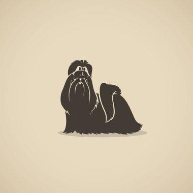 vector illustration design of black shih tzu dog on background