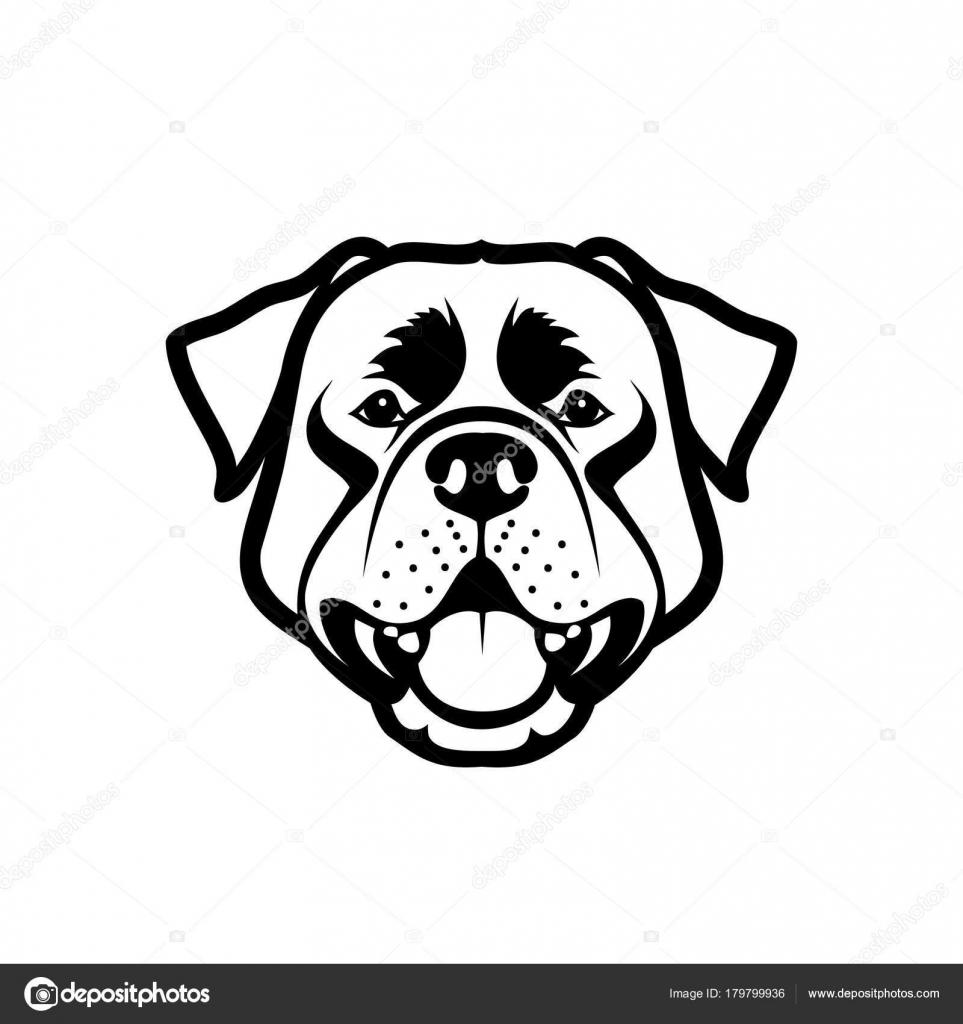Vector Illustration Dessin Chien Rottweiler Noir Isolé Sur
