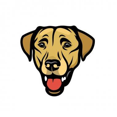 dog  labrador vector illustration