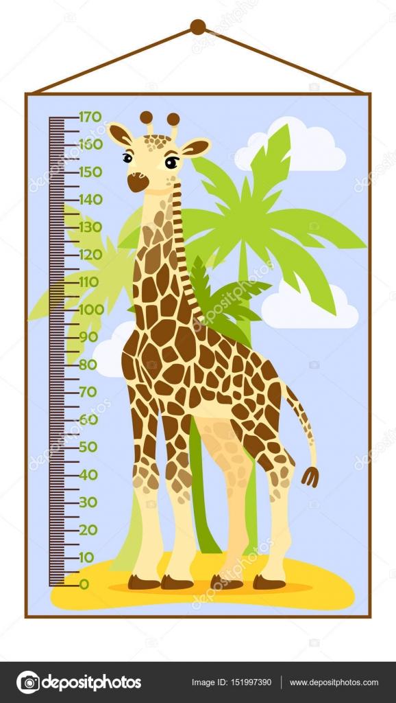 Vector Illustration Of Kids Height Chart With Cartoon Giraffe
