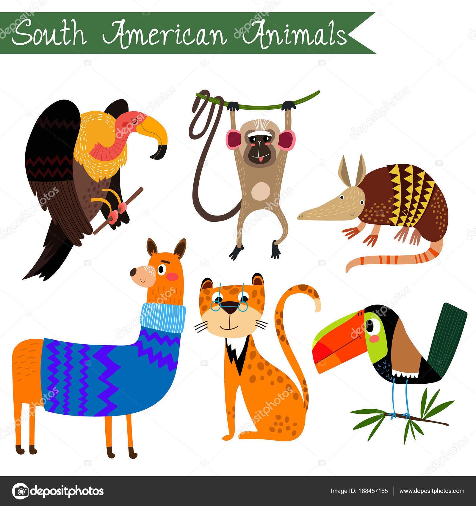 支那アメリカ動物ベクトル イラストですベクトルを設定します分離