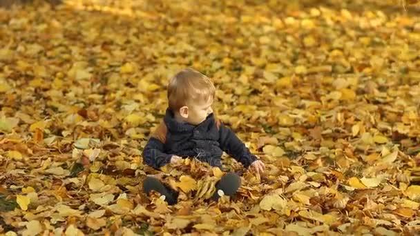 Chlapeček v podzimní listí v parku