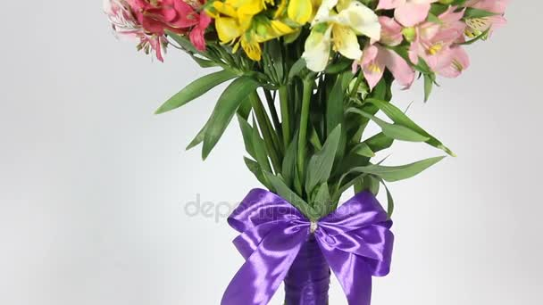 colorful flowers bouquet of alstroemeria. bottom to top motion