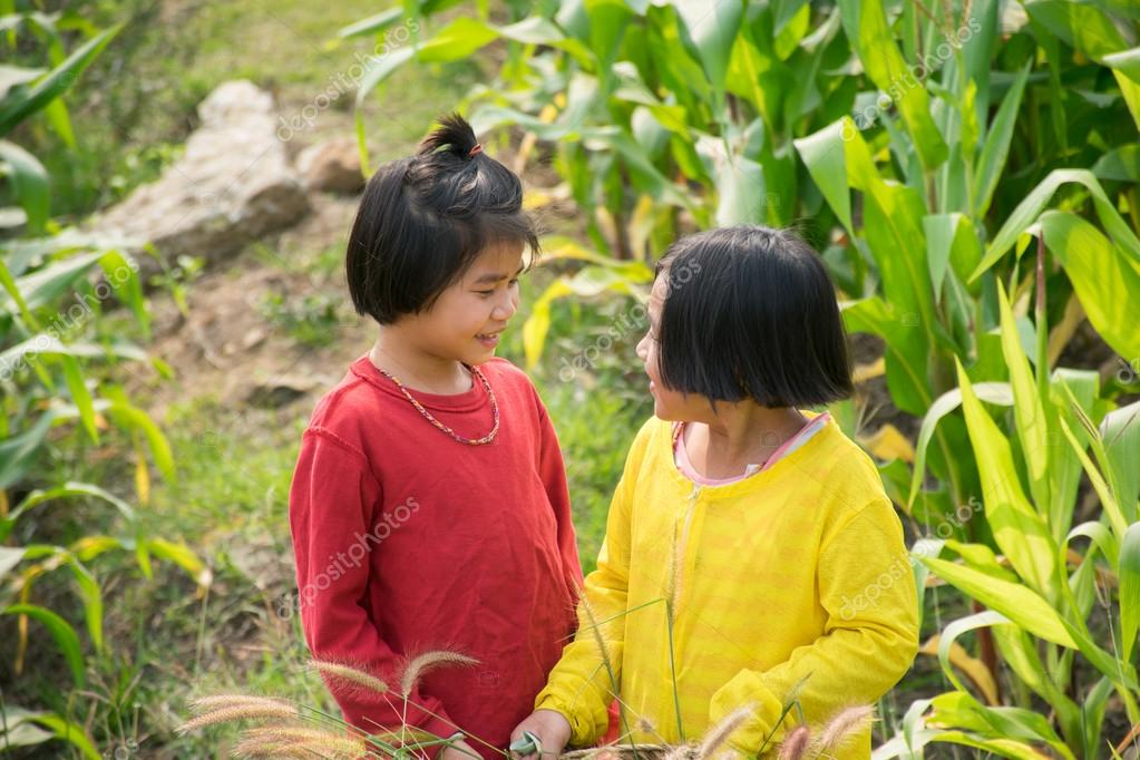 chicas asiáticas que trabajan en el campo de maíz — Foto de stock ...