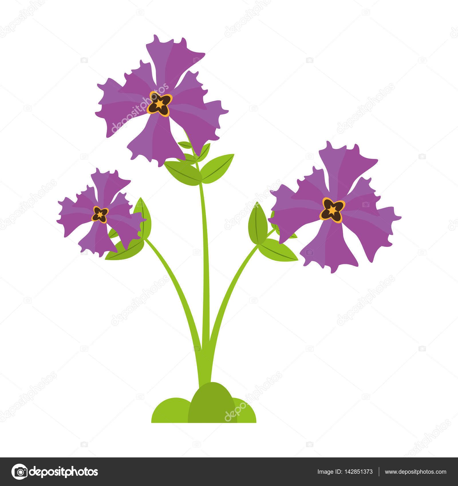 Iris flower garden botanical stock vector djv 142851373 iris flower garden botanical stock vector izmirmasajfo