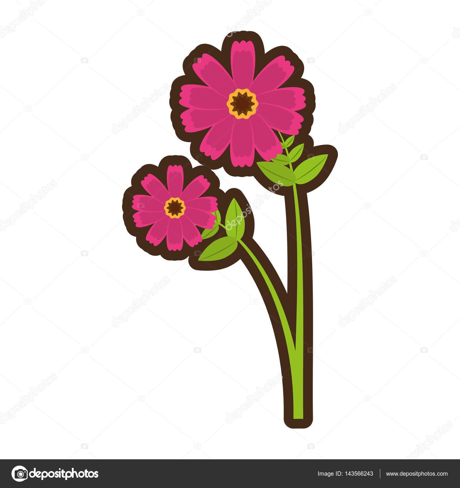 Cartoon Pink Cosmos Flower Spring Icon Stock Vector Djv 143566243