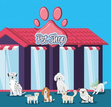pet shop veterinary elements