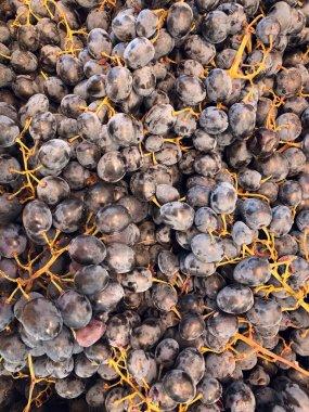 Photo many many grapes supermarket shelves
