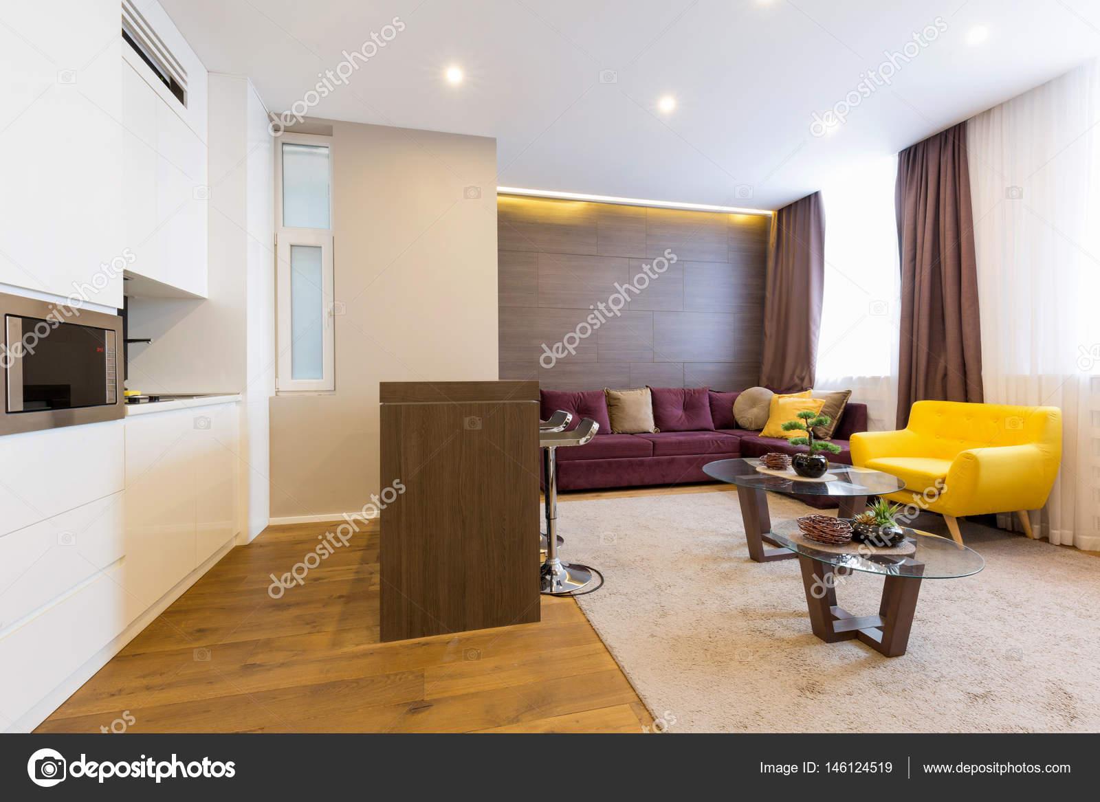 Interior De Um Apartamento De Hotel Com Cozinha Moderna