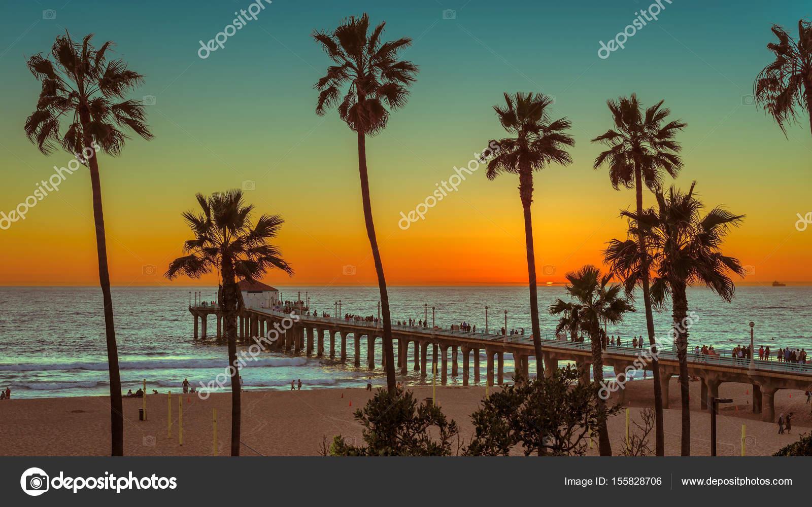 Los Angeles Palm Trees Wallpaper Palm Trees On Manhattan Beach