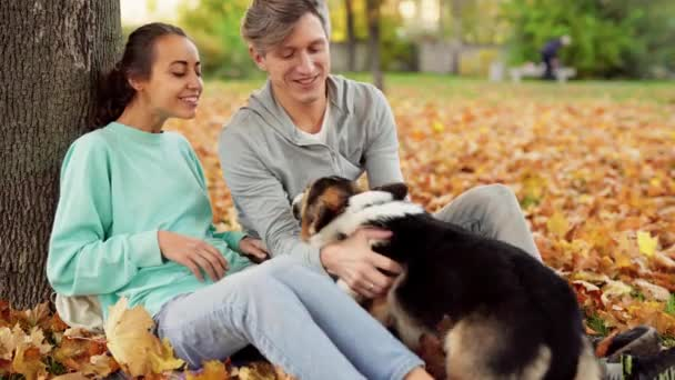 Loving Couple Man And Woman sitting with Welsh Corgi Dog In City Park hugging