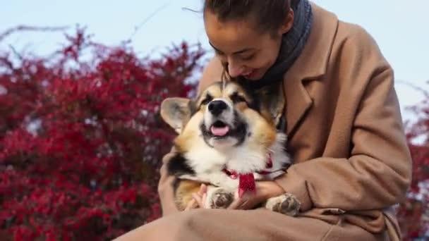 Csinos mosolygós nő Sétáló aranyos kutya a természetben