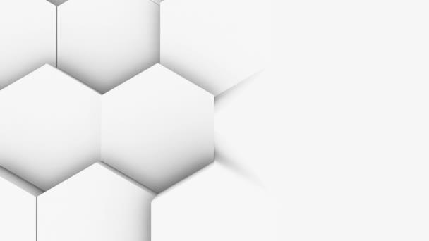 abstraktní polygonální geometrický povrch světlo jasný čistý minimální polygonální mřížka vzor náhodné vlnění pohyb pozadí plátno v čisté zdi architektonické bílá