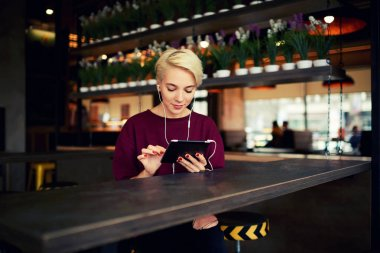 Attractive female hipster with short haircut texting messages through web chat via modern touchpad