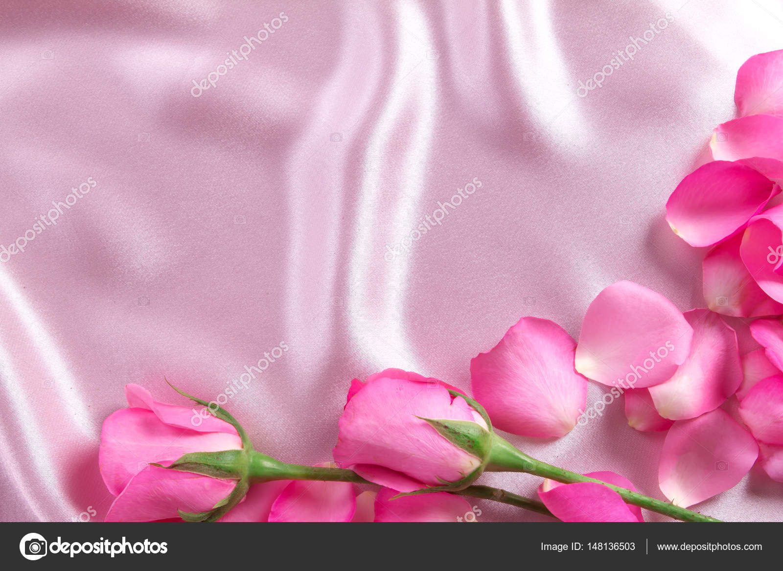 A Bouquet Sweet Pink Roses Petal On Soft Pink Silk Fabric Roma