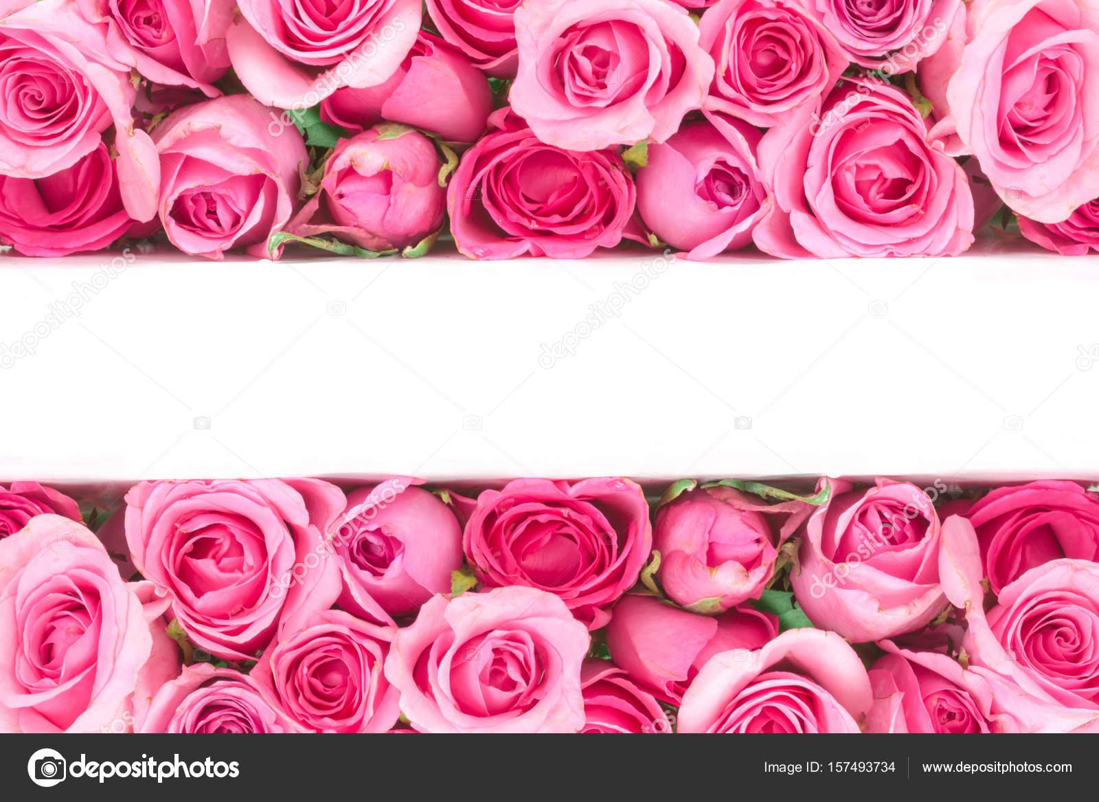 Frontière De Belle Douce Douce Rose Rose Damour Romantique