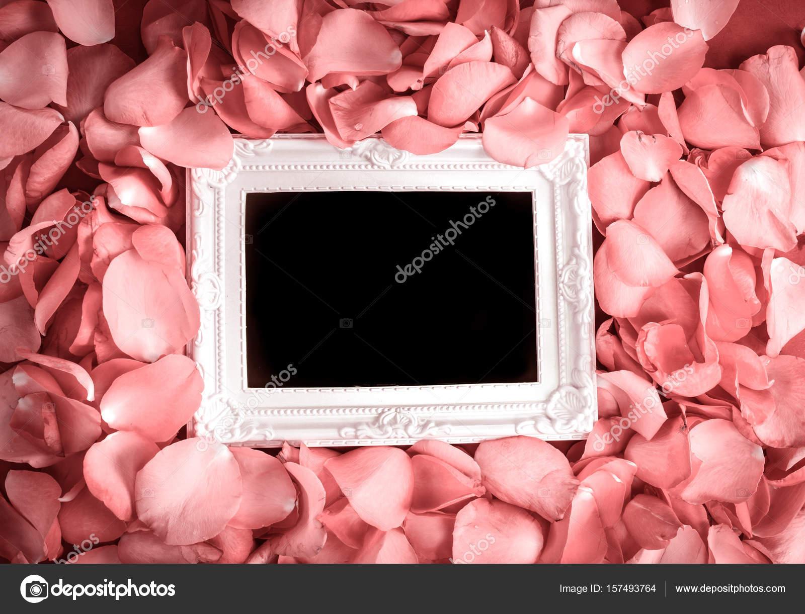 Marco vacío con pétalo de rosas dulces, romance y l — Foto de stock ...