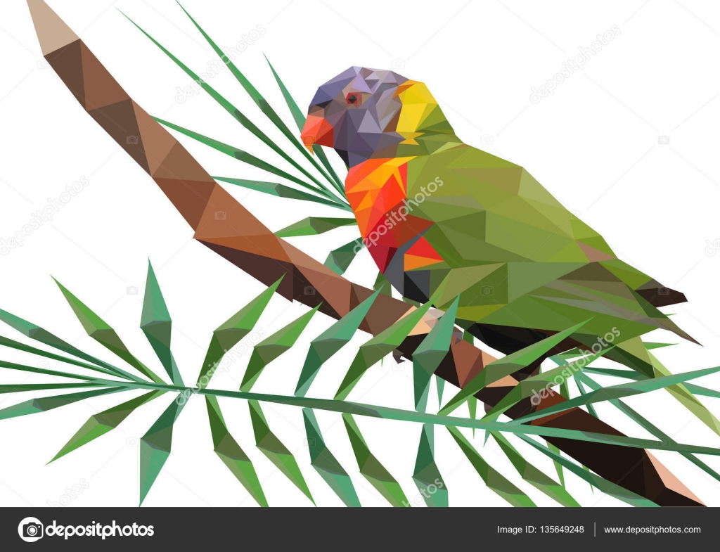 Abstrakte Low Poly Papagei, Allfarblori auf AST - Vektor Il ...