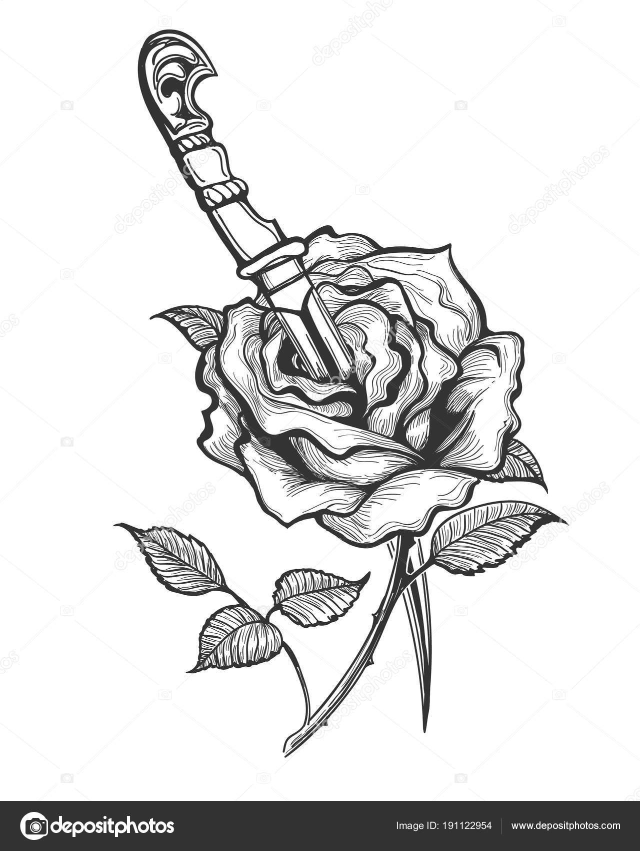 Róża Kwiat Piersed Przez Sztylet Tatuaż Grafika Wektorowa