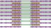 Fotografia Rilascio di troponina calcio umano
